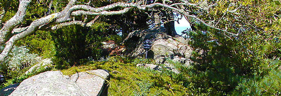Blisscapes Landscape Design & Nursery Rock Garden Gallery